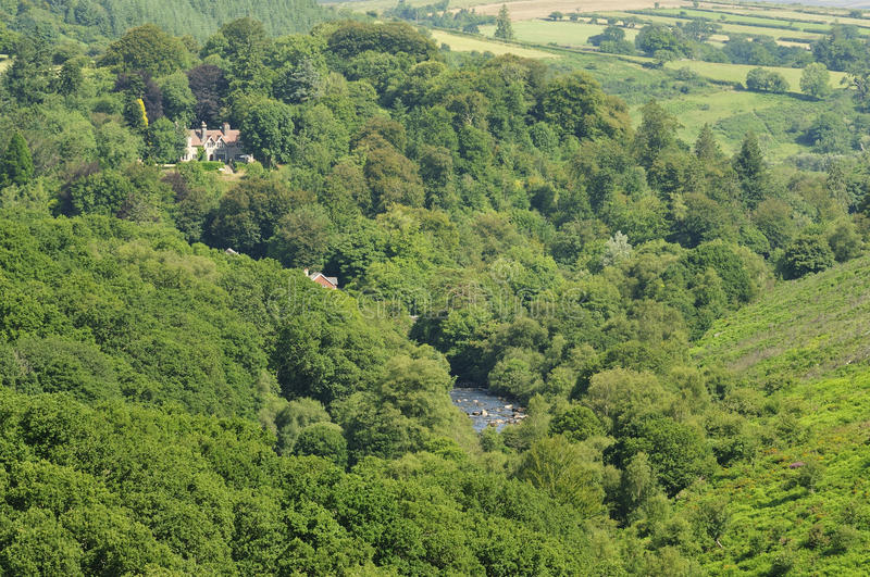 River Dart valley. Wooded River Dart valley at Dartmeet, veiwed from near Combestone Tor royalty free stock photography