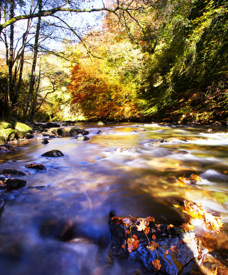 Download River Deep stock image. Image of nature, autumn, trees - 27412055