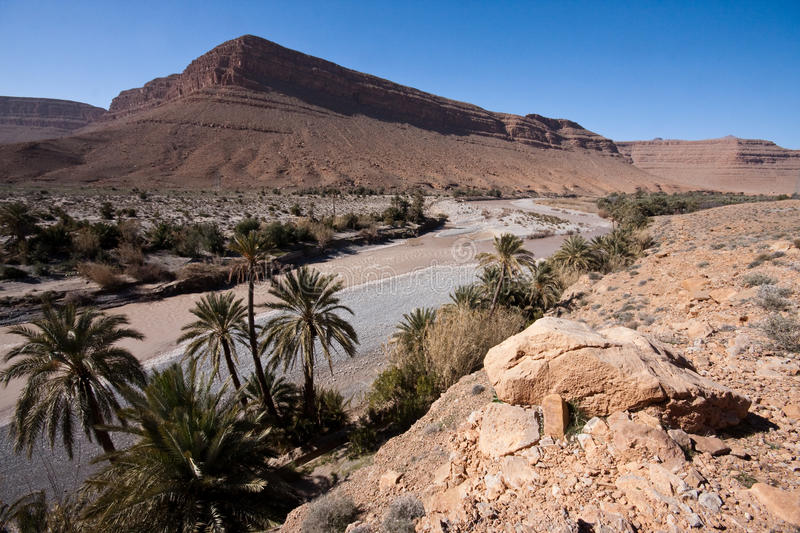 River in the desert. We see mountain range, river and palmtrees in this picture. Stony desert royalty free stock photos