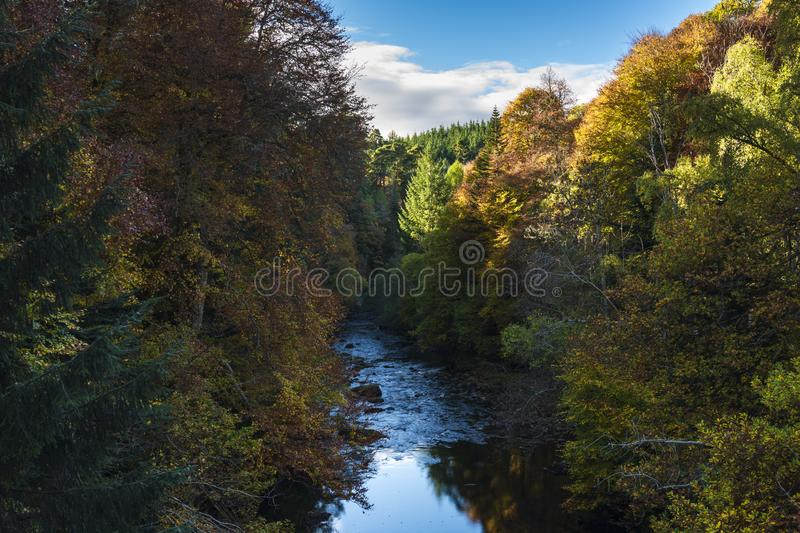 River Divie. The woodland in autumnal colour on the banks of the River Divie in Moray, Scotland 20 October 2018 stock photo