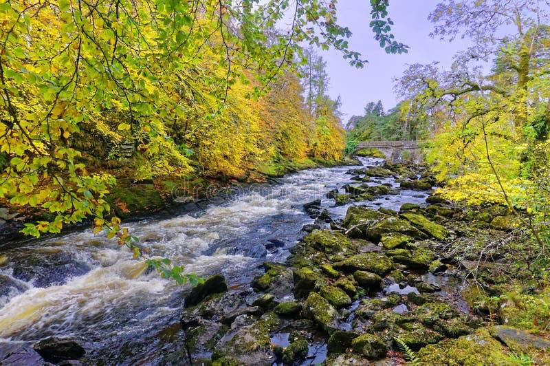 River Dochart in Autumn stock image
