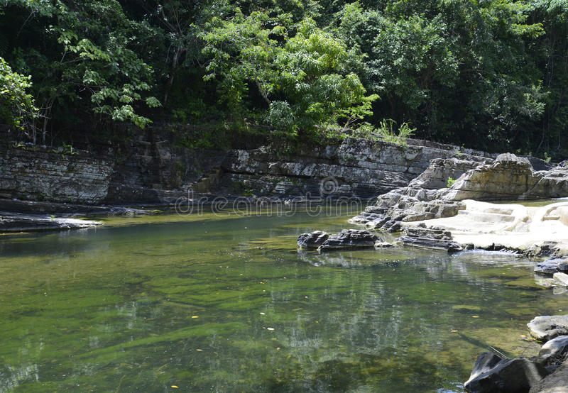 River in the Dominican Republic jungle stock photography