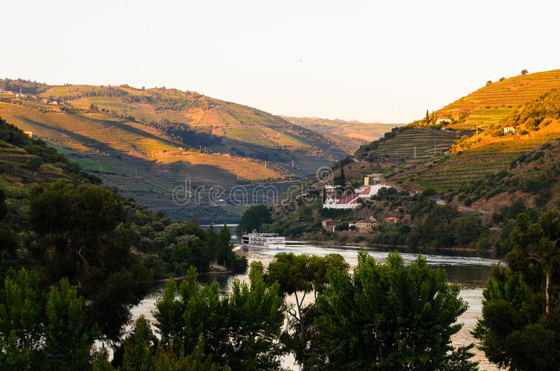 River Douro valley, Portugal. Vineyard hills in the river Douro valley, Portugal royalty free stock images