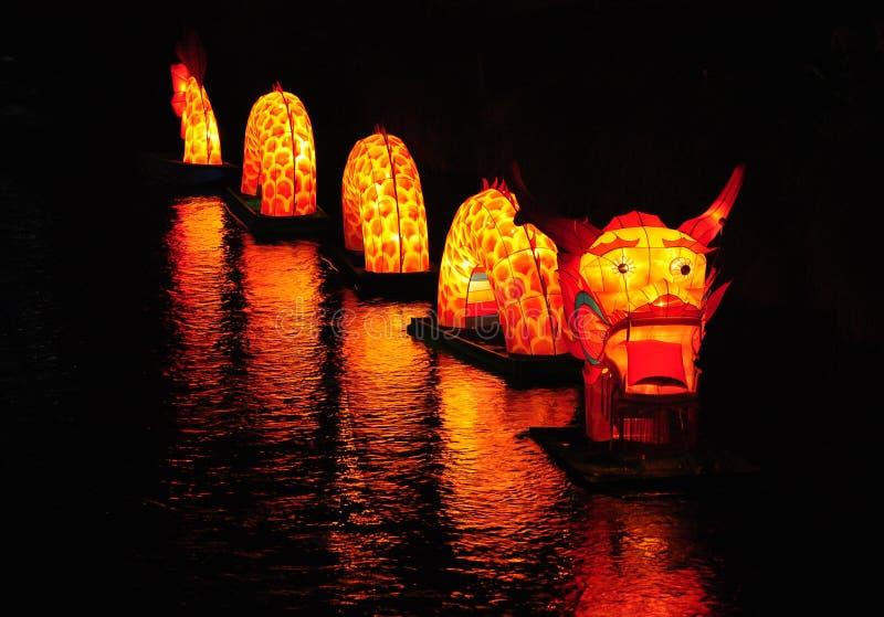 Download River Dragon stock image. Image of dragon, lantern, glow - 20797915