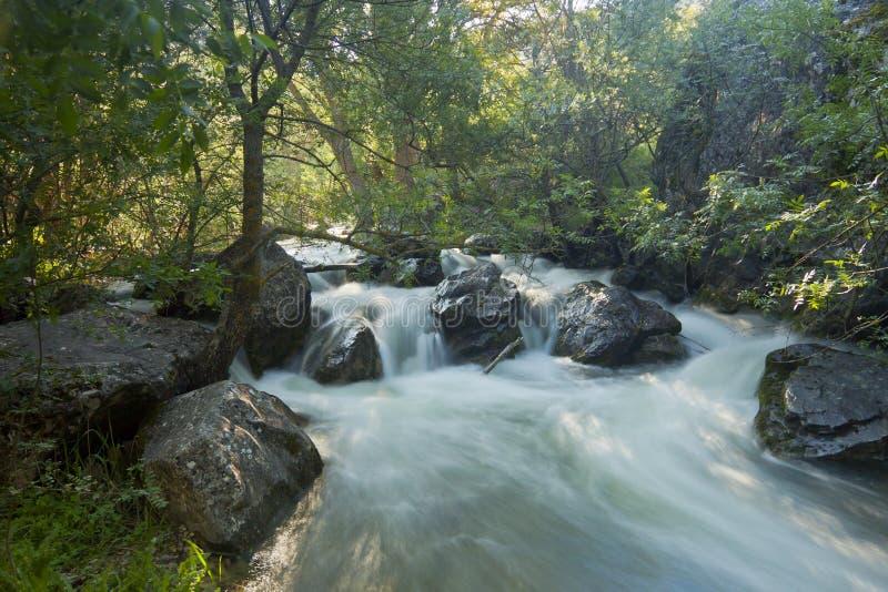 River Dulce stream in Guadalajara, Spain stock images