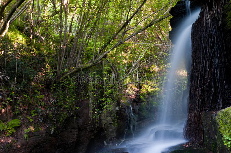 River Eifonso waterfall, in Vigo, Spain royalty free stock images
