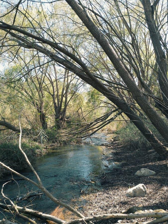 River... royalty free stock photos