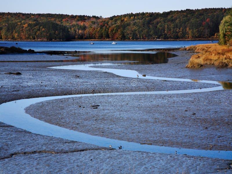 River Estuary, Low Tide stock images