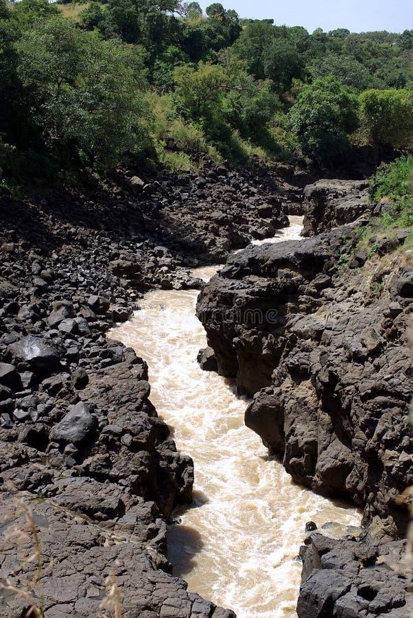 River In Ethiopia Stock Image