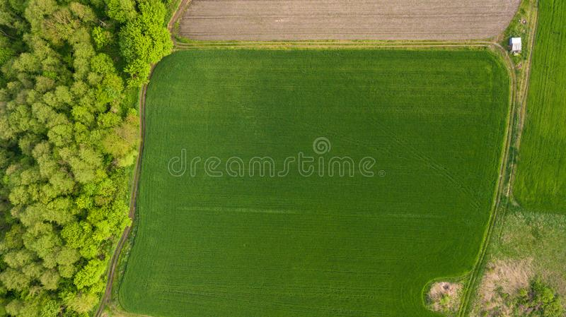 River and fields top view. Photographed from the drone. Beautiful view of the agropolis. Spring. Green fields. stock photography