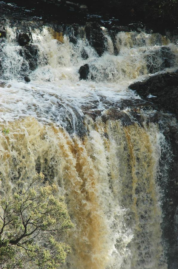 A muddy waterfall cascading over a cliff. A river in flood has formed a waterfall over a cliff. The water is muddy, with white foam. A tree is in the foreground stock photos