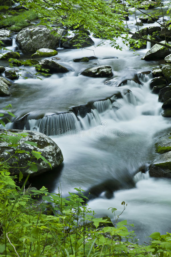 Download River Flow In TN, Smoky Mountains Stock Photo - Image: 24591610