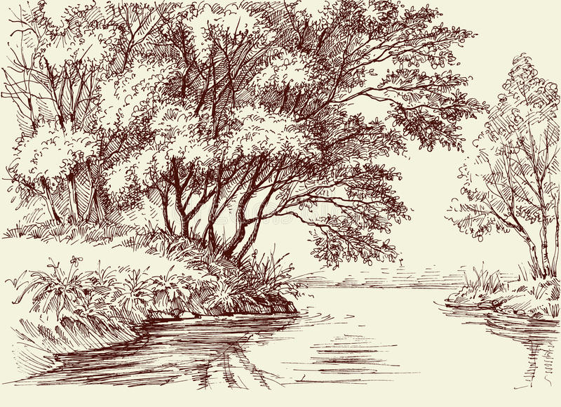 River flow in the woods royalty free illustration
