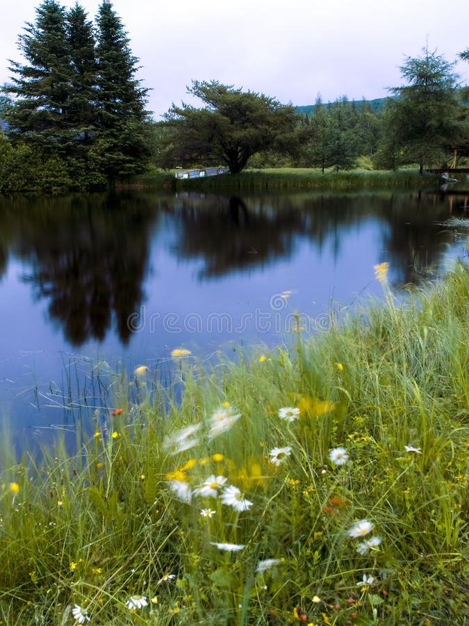 River And Flower Wind Landscape Stock Photography