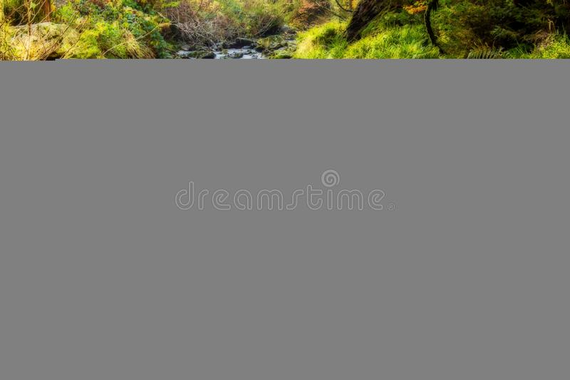 River flowing through countryside stock photography