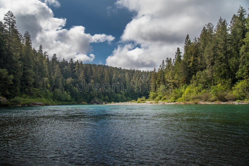 A river flowing through a forest on a cloudy day. royalty free stock photos