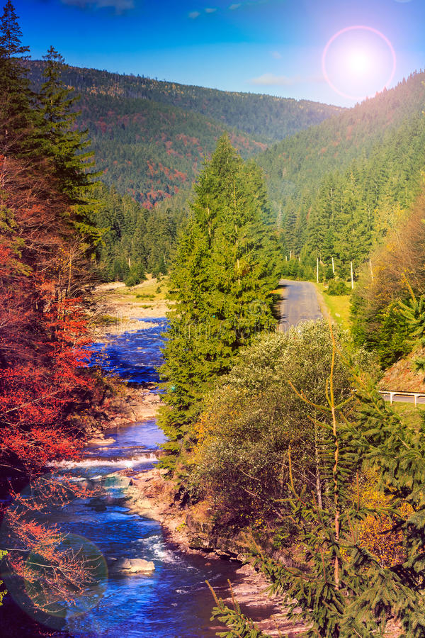 River flows by rocky shore near the autumn mountain forest royalty free stock image