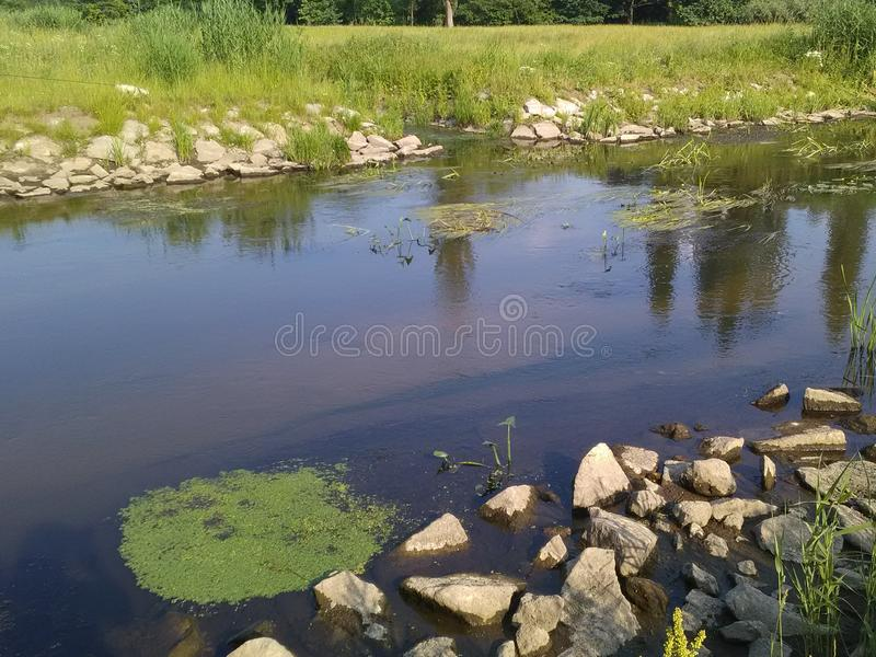The river flows smoothly past the banks. A calm river flows smoothly past the stone banks of the banks, ducks, reeds stock photo