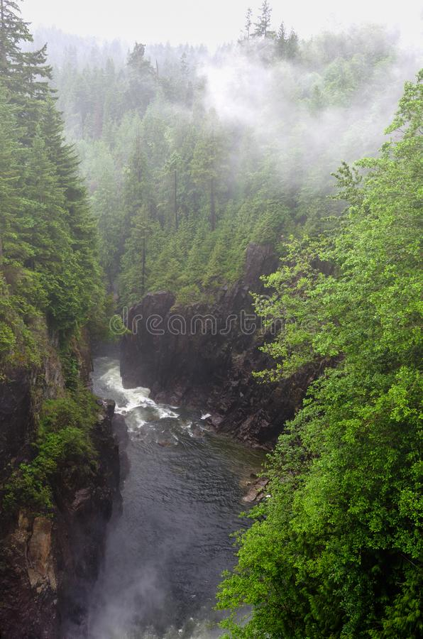River at the Foot of a Deep Gorge on a Foggy Day. River at the Foot of a Deep Gorge with Forested Cliffs on a Rainy and Foggy Day. North Vancouver, BC, Canada stock photos