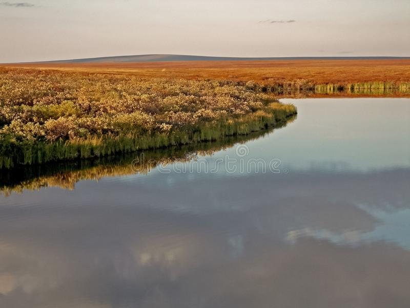 River and forest. Autumn landscape on the Yamal Peninsula under stock photos