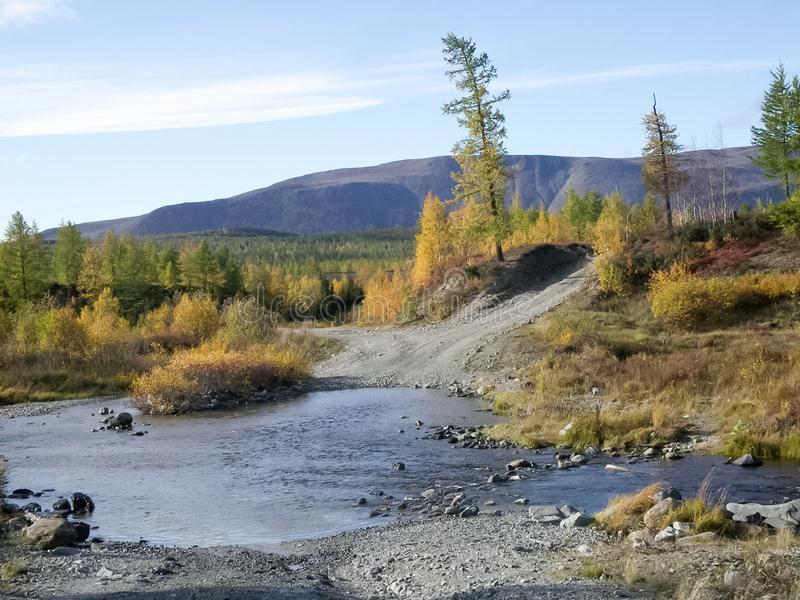 River and forest. Autumn on the Yamal Peninsula under. River and forest. Autumn landscape on the Yamal Peninsula under Salekhard. Autumn forest. The leaves of royalty free stock photo