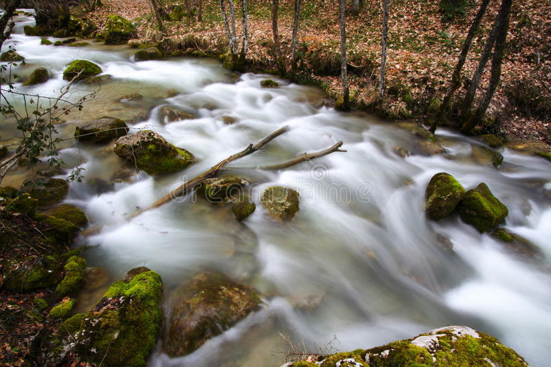 River in the forest at fall royalty free stock photo