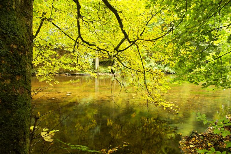 River through forest on fall day. River banks through forest on sunny fall day stock photography