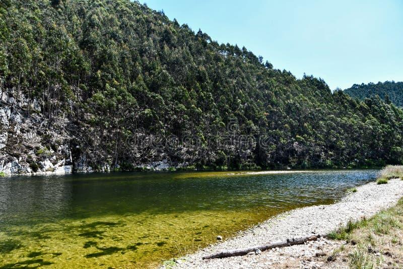 River in forest, photo as a background , san antolin de bedon principado de asturias, spain europe. River in forest, photo as a background, digital image stock photos