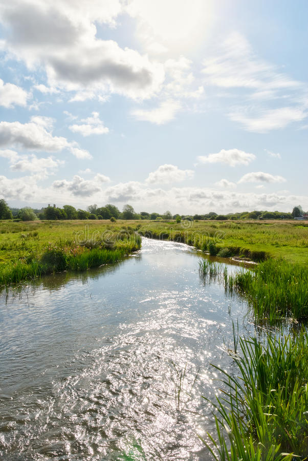 Download River Frome scenic stock photo. Image of english, green - 20606202