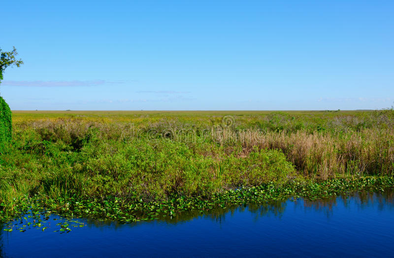 River Of Grass Everglades National Park Florida Stock Image - World famous river name
