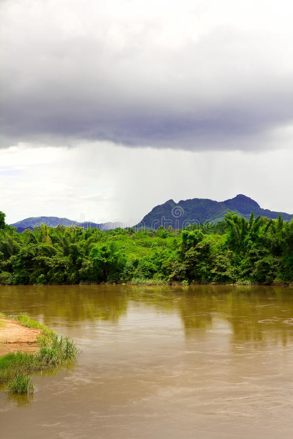 The river in the jungle stock photography