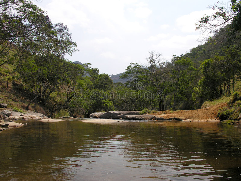 River in jungle stock photos