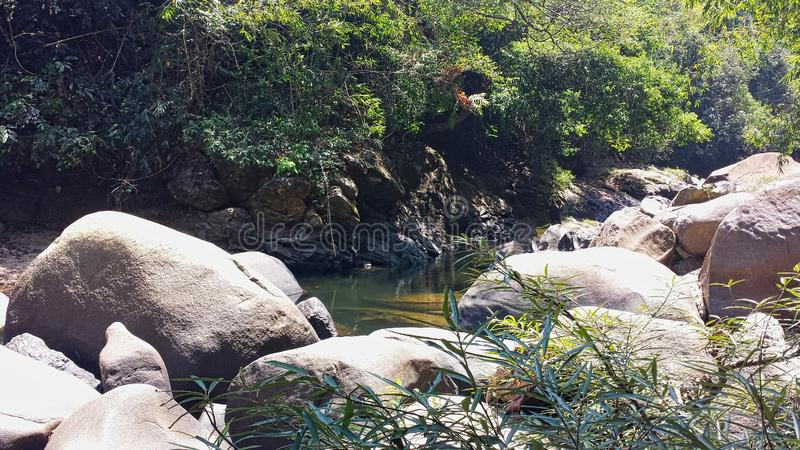 a river in the jungle in thailand stock photography