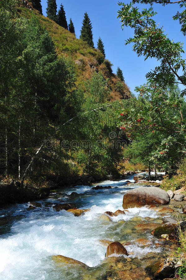 River Kazakhstan Almaty stock image