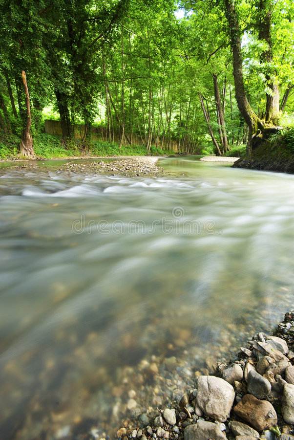 The river Know. River in a natural Park in Calabria, Italy stock photography