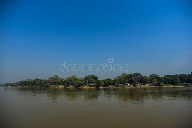 River landscape and jungle. River landscape  and jungle,Pantanal, Brazil stock photo