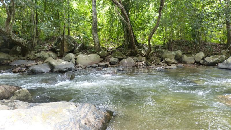 River with large rocks surrounded by trees royalty free stock photo