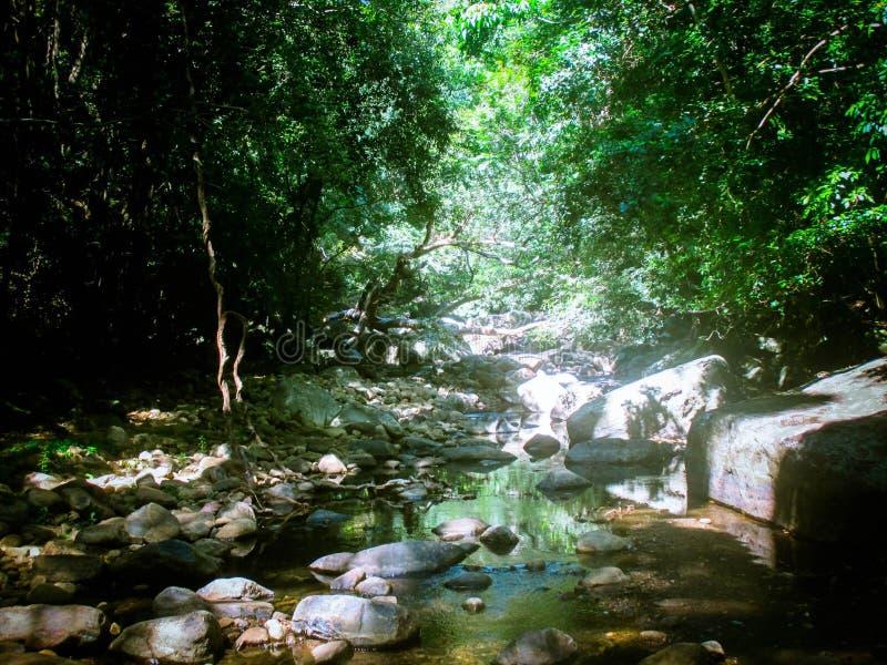River  Meemure village, Sri lanka. Sri Lanka is a trilingual country, some rivers may have a Sinhala name i.e. Kalu Ganga, while other have an English name i.e stock photography