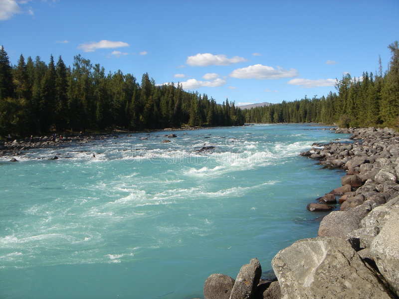 River in mongolia royalty free stock photo