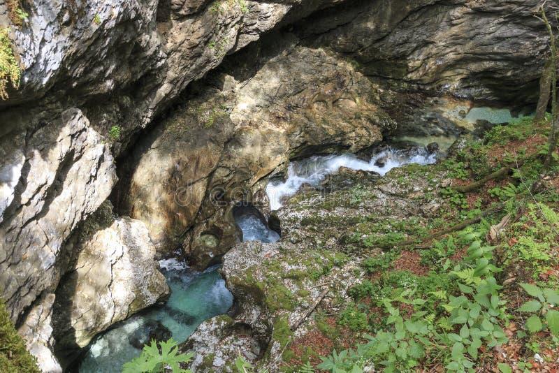 River Mostnica Mostnice Korita near lake Bohinj in Slovenia stock photo