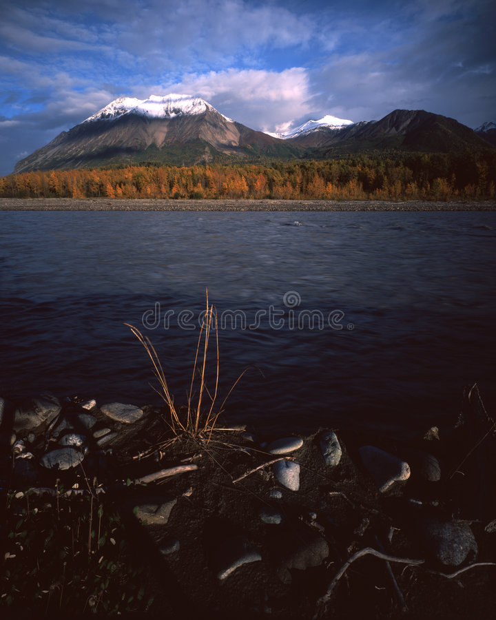 River and mountain fall landscape in Alaska royalty free stock images