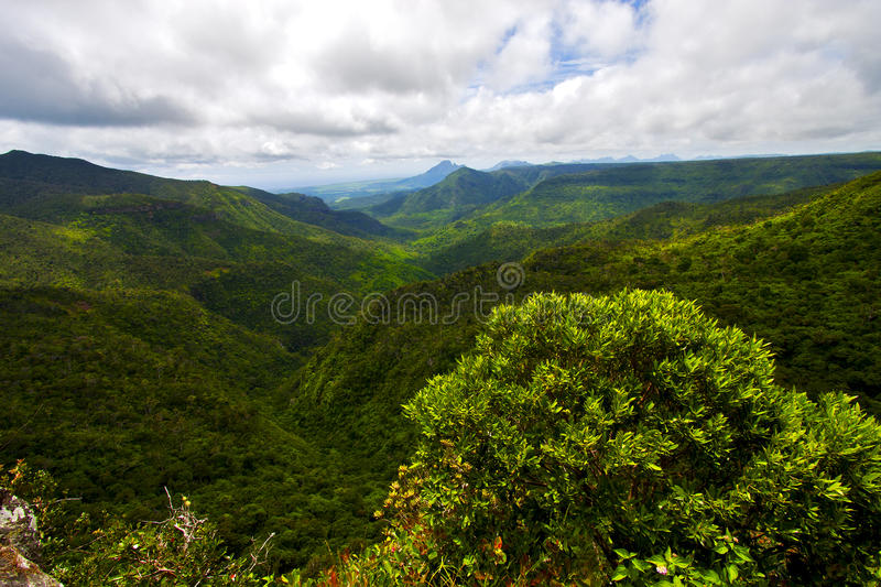 River mountain in mauritius. Black river mountain in mauritius africa water fall gran riviere royalty free stock photos