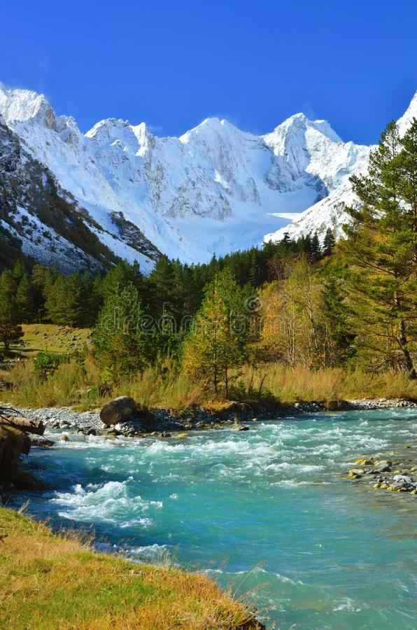 River in mountains royalty free stock image