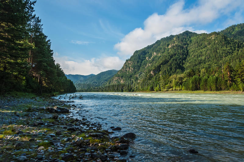 River mountains forest royalty free stock images