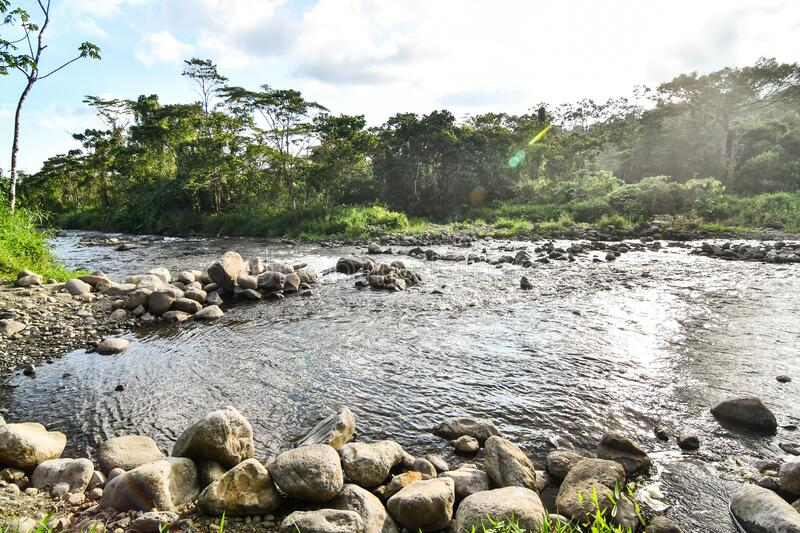 River in the mountains, photo as a background ,taken in Arenal Volcano lake park in Costa rica central america. River in the mountains, photo as a background royalty free stock photos