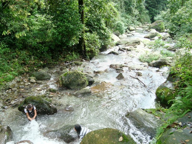 River Murti at Rocky Island Teesta, the Rangit river flowing through a dense pristine jungle in northeast of Rangpo Chu at Rangpo stock images