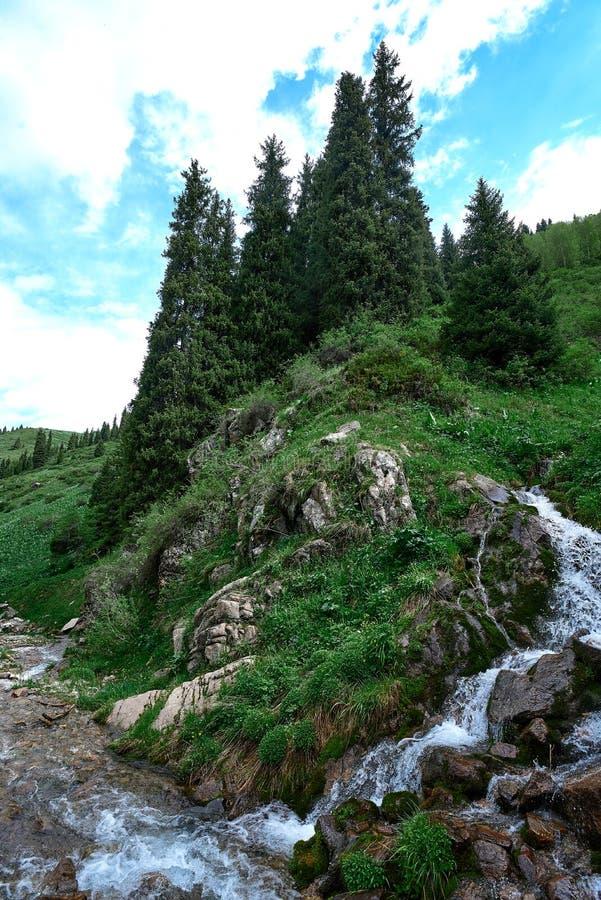 River near butakovsky waterfall near Almaty. Landscape nature stone royalty free stock photos