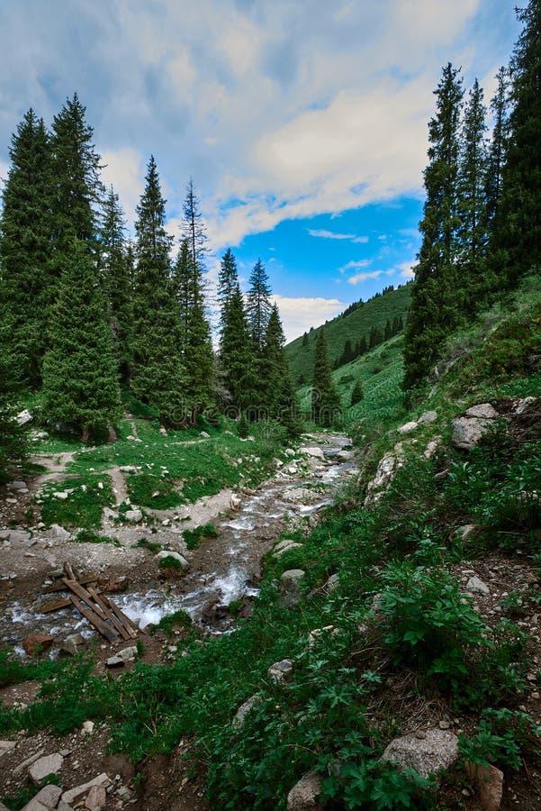 River near butakovsky waterfall. Near Almaty, landscape nature stone sky royalty free stock images