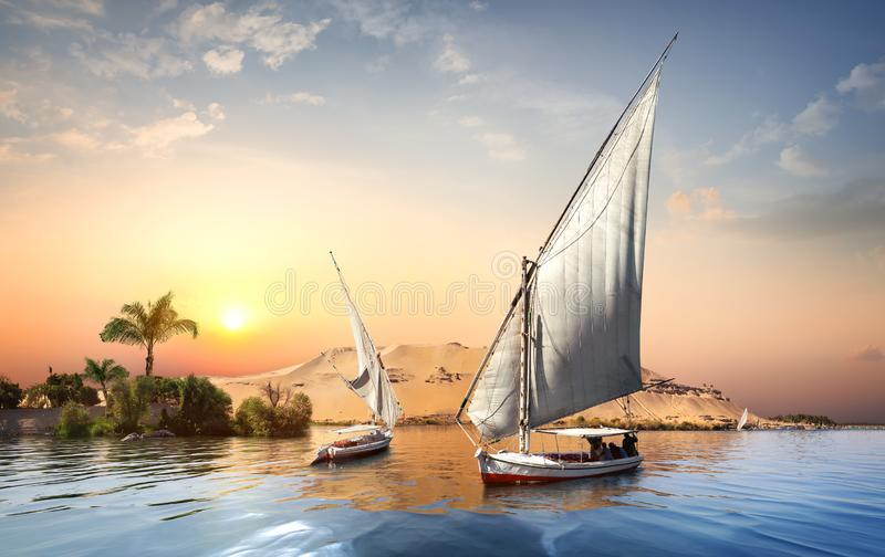 Sunset in Aswan. River Nile and boats at sunset in Aswan stock photo