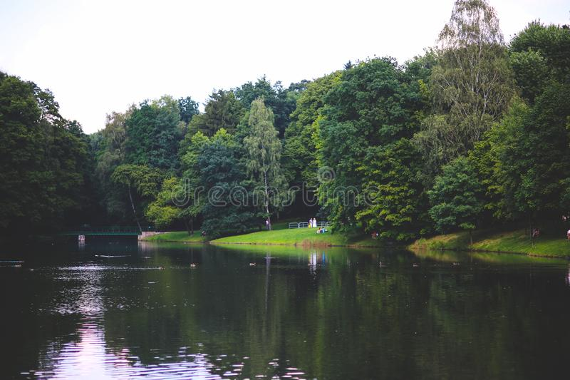 The river in the park royalty free stock photo